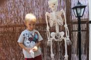 Skelet1.JPG