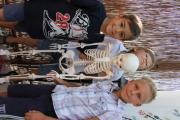 Skelet2.JPG
