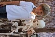 Skelet3.JPG