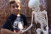 Skelet4.JPG
